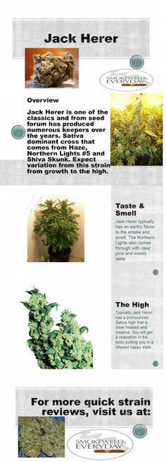 Smokeweedeverday.org for More Quick Strain Reviews #Weed !!!