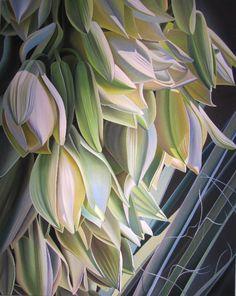 Arizona Flower Shower (Yucca Blooms at the desert Botanical Gardens) oil on canvas Dyana Hesson Big Flowers, Beautiful Flowers, Arizona Flower, Tamara Lempicka, Desert Botanical Garden, Botanical Gardens, Flower Shower, Botanical Prints, Watercolor Paintings