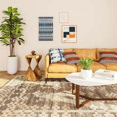 Stylist Picks: Trendy Living Room Rugs for Every Budget | Modsy Blog