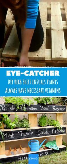 Homemade herb shelf ensures plants always have necessary vitamins #balcony #garden #diy #simple #pallets