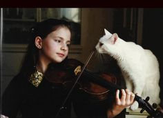 cat and violin image Cats Musical, Cat People, White Cats, Black Cats, My Buddy, Girl Face, Animals For Kids, Art Music, Puppy Love