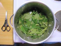 Nokkoskeitto – Nettle Soup