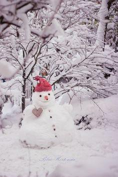 Winter Scenery, Winter Fun, Winter Time, Winter Wonderland Christmas, Winter Christmas, Christmas Time, Christmas Decor, Winter Images, Winter Pictures