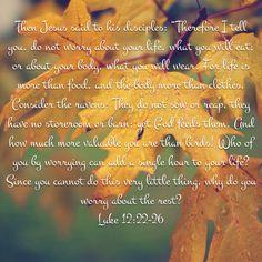 Luke 12:22-26  My favorite Bible verses.
