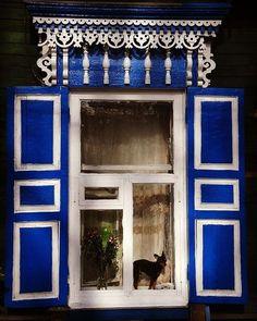 """Polubienia: 28, komentarze: 4 – Hasające Zające (@hasajacezajace) na Instagramie: """"#hasajacezajace  #dog #pintsher  #puppy #irkutsk  #russia  #siberia  #woodenhouse #window  #travels…"""""""