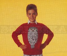 vintage Adult and Childs HAWK OWL jumper knitting pattern (80s) (PDF)