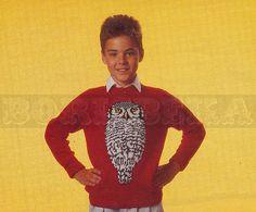 vintage Adult and Childs HAWK OWL jumper knitting pattern (80s) (PDF)
