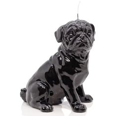 Wiedemann Candles Pug Black Candle (160 CAD) ❤ liked on Polyvore featuring home, home decor, candles & candleholders, wax candles, pug home decor, black sculpture, black candles and black home decor