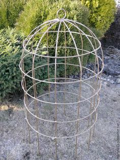 Garden Crafts, Shade Plants, Garden Furniture, Patio Garden, Garden Deco, Outdoor Diy Projects, Topiary Garden, Amazing Gardens, Plants