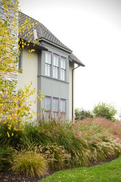 Grasses, depth, curved bed