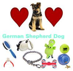 """German Shepherd Dog"" by adina-lupu-1 ❤ liked on Polyvore featuring Pet London, women's clothing, women's fashion, women, female, woman, misses and juniors"