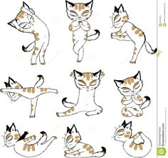 Image result for yoga cat