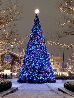 Blue Christmas - Easton Town Center, Columbus, Ohio | by tim.perdue, via Flickr
