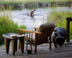 Quand les hippos s'invitent... Xakanaxa Lagoon, Botswana