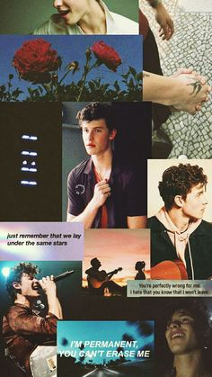 Read 🌻wallpaper Shawn mendes🌻 from the story ↳ᴘᴀᴄᴋꜱ↲ by mrvelnatural (* 𝓮𝓵 𝓶𝓪𝓻𝓲𝓪𝓬𝓱𝓮 *) with reads. Shawn Mendes Memes, Shawn Mendes Imagines, Shawn Mendes Fofo, Shawn Mendes Wallpaper, Shawn Mendes Lockscreen, Shawn Mendas, Chon Mendes, Mendes Army, Magcon Boys