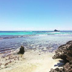 #rottnestisland #rotto #lovemyrotto #wa #thisisperth #insta_australia #discoveraustralia #insta_australia #nakedaustralia #beach #sea #calm #perthlife #perthisok #thisiswa #australiagram #oz #happyperth by blue_lilly http://ift.tt/1L5GqLp