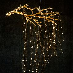 Shop the Look: Stargazer Cascade Branch in Holiday Lighting at Terrain http://amzn.to/2s1qN4p