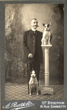 Vintage Doggy: Vintage Photos of Jack Russell Terriers