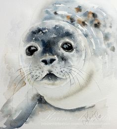 #Doodlewash - watercolor painting by Karin Åkesdotter of baby seal #WorldWatercolorGroup