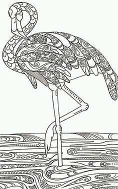 Flamingo color page black and white drawing outline for decorative painting idea: struisvogel