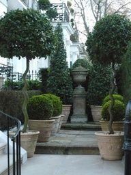 trees, shrubs, sculpture, bluestone...simply fantastic!