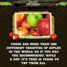 How 'bout them apples? #NationalAppleMonth #FunFact #AngryOrchard #Infographic