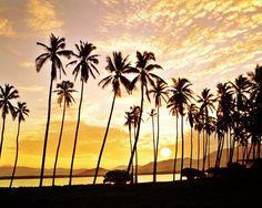 Otro magnífico atardecer en Acapulco. A beautiful sunset in Acapulco.