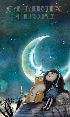 спокойной ночи картинки найти