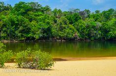 Quem nunca viajou e falou que aquele destino parece coisa de filme? A Prainha do Rio Novo, no Jalapão (TO), é um desses destinos! Foto: Fábio Pastorello
