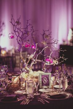 Manzanita branches and floating orchids make modern centerpieces for the reception tables. De Young Flowers. IQphoto.