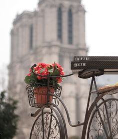 Love the bike. Saw this in Paris (Notre Dame, not the bike). Paris France, Paris 3, I Love Paris, Beautiful World, Beautiful Places, Belle France, Foto Transfer, Foto Poster, Paris Travel