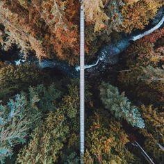Lynn-barranca-suspensión-puente