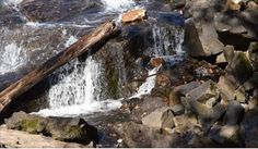 My Photos, Waterfall, Wood, Outdoor, Outdoors, Woodwind Instrument, Timber Wood, Waterfalls, Trees