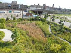 Peak Flow                 (2,500 sq. ft. Roof)                            Grass Field          Roof1 Year Storm           ...