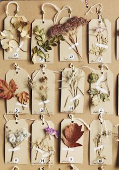 How to make a floral Advent calendar | Gardens Illustrated