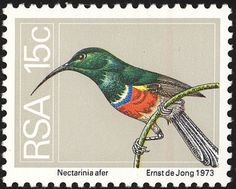 Greater Double-collared Sunbird stamps - mainly images - gallery format
