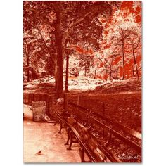 Trademark Fine Art Red Forest Canvas Art by Miguel Paredes, Size: 18 x 24, Red