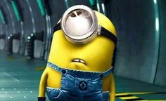 No matter how many times you watch the funny faces of these minions each time they look more funnier…. So we have collected best Most funniest Minions images collection . Minions Images, Funny Minion Pictures, Funny Minion Memes, Minions Love, Minions Quotes, Funny Jokes, Minion Humor, Fun Funny, Minions Pics