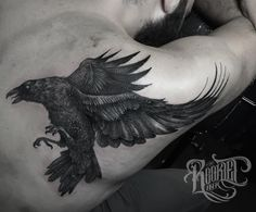 A raven a day, keeps the doctor away... @rookletink #kwadron #tattoome #h2oceanproteam