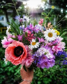 ANEMON? Floral Wreath, Wreaths, Plants, Wedding, Instagram, Decor, Valentines Day Weddings, Decoration, Door Wreaths
