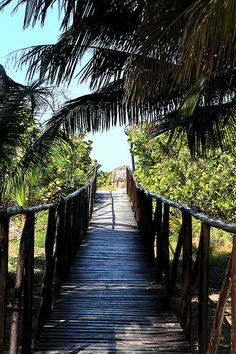 Path to the Beach - Varadero, Cuba Cuba Island, Island Beach, Cuba Pictures, Cuba Beaches, Varadero Cuba, Cuba Travel, Beautiful Nature Wallpaper, Havana Cuba, Carnival
