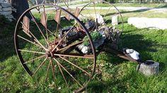 Ringanatore ( attrezzo agricolo ), Abruzzo Agriturismo Il Portone