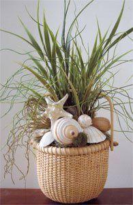 Shells and Grass in 6 Nantucket Basket Beach Decor | Nautical Decor | Tropical Decor | Coastal Decor