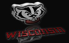 1000 images about university of wisconsin madison