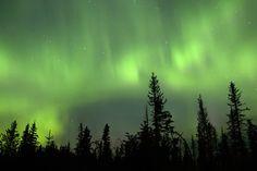 September 10 over Sitka spruce photo - Tom and Jennifer Polakis ...