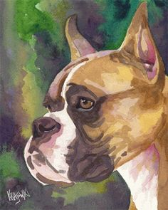 Boxer Dog Art Print of Original Watercolor Painting - Continental Bulldog, Boxer Love, Dog Paintings, Dog Art, Watercolor Paintings, Watercolour, Pet Portraits, I Love Dogs, Cute Animals