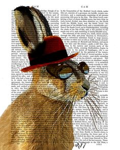 This is our Horatio Hare Portrait, a Print of an original illustration by FabFunky ------------------------------------------------------------