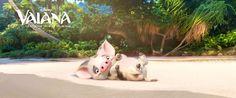 Film Disney Vaiana 2016 - pua