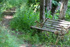 Old bench in Norway ~ Kari Meijers