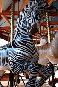 The Speedwell Conservation Carousel ~ Smithsonian National Zoo Grevy zebra All The Pretty Horses, Beautiful Horses, Merry Go Round Carousel, Carosel Horse, Rocking Horses, Painted Pony, Carnivals, Fantasy, Zebras